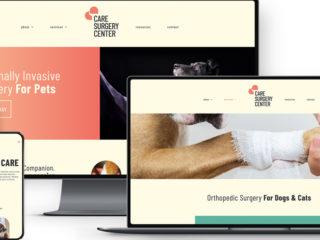 CARE Surgery Center - Website Development